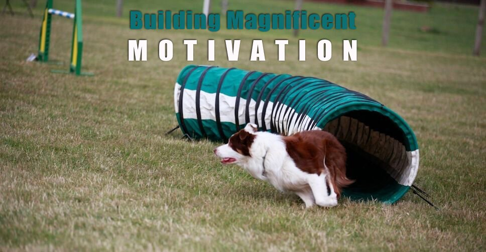magnificent motivation
