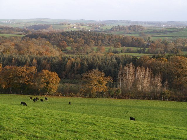 Launceston Circular Walk
